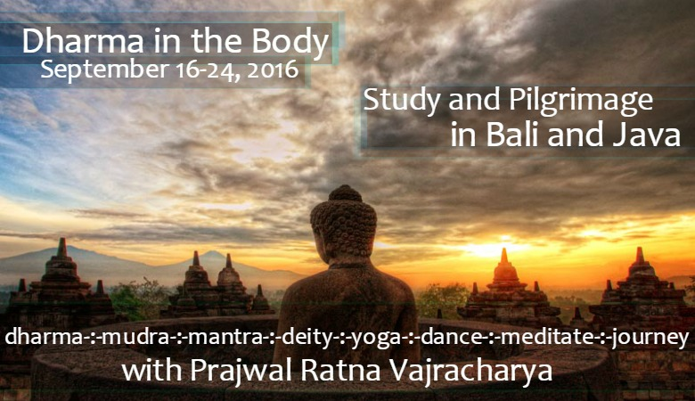 dharma in the body